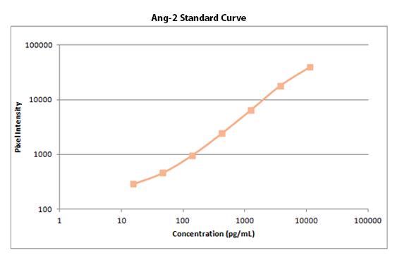 Ang-2 Standard Curve