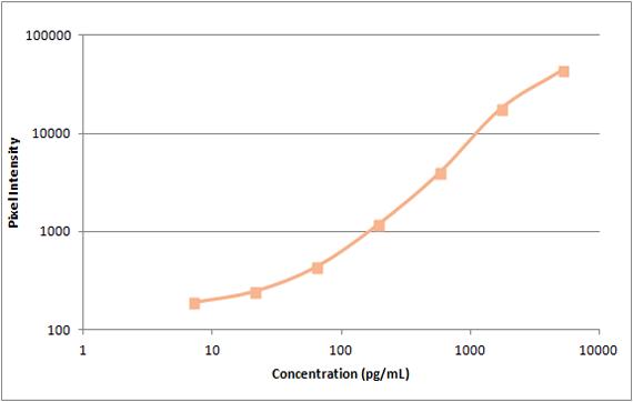 Human FGF Standard Curve