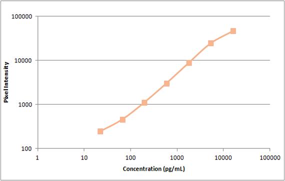 Human HGF Standard Curve