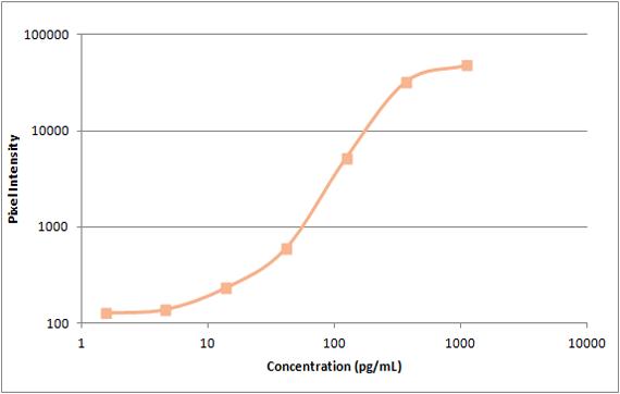 Human MCP-2 Standard Curve