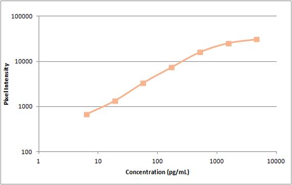 Human PDGF-BB Standard Curve