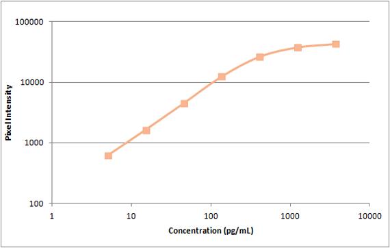 Human RANTES Standard Curve