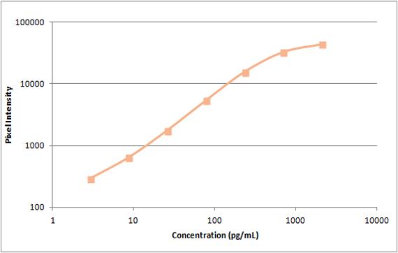 Human TARC Standard Curve