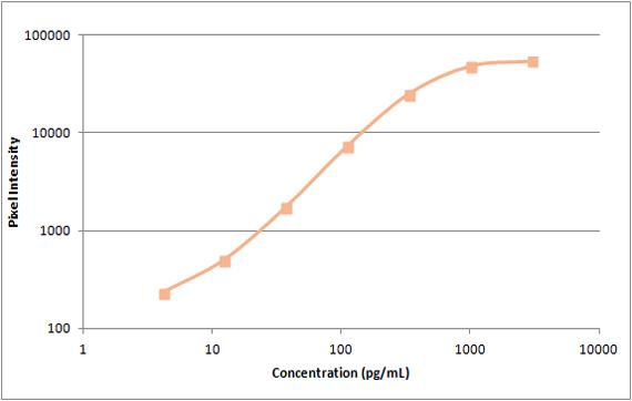 human I-309 standard curve