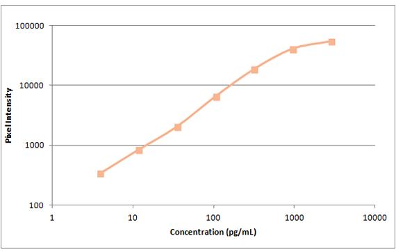 human eotaxin standard curve