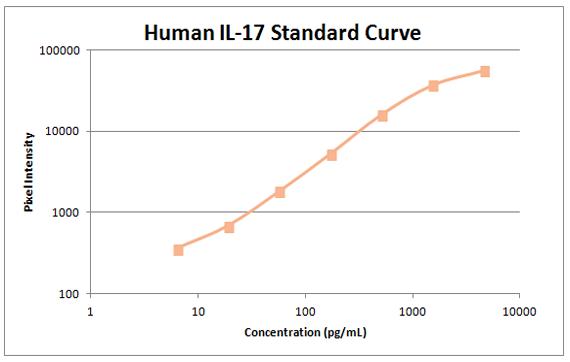 human il-17 standard curve